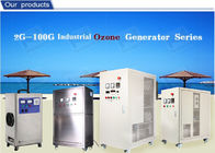 Air Cooled Ozone Generator Water Purification For Cleaning Ozone cleanr Machine 30g